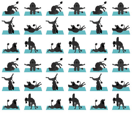 Yoga dogs poses and exercises poster design. Portuguese water dog  seamless pattern. Vector illustration Illustration