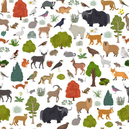 Apine tundra biome, natural region seamless pattern. Terrestrial ecosystem world map. Animals, birds and plants design set. Vector illustration
