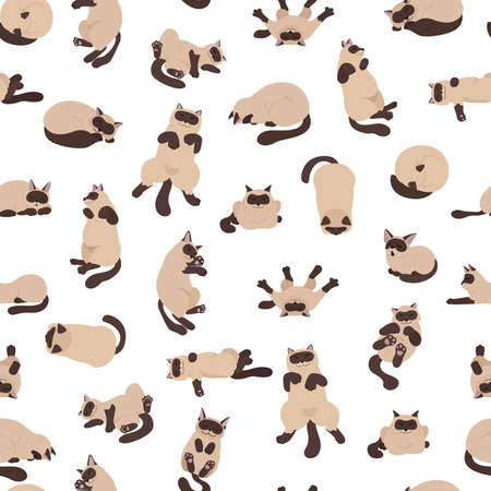 Sleeping cats poses seamless pattern. Flat color simple style design. Siamese colorpoint cats. Vector illustration Ilustración de vector