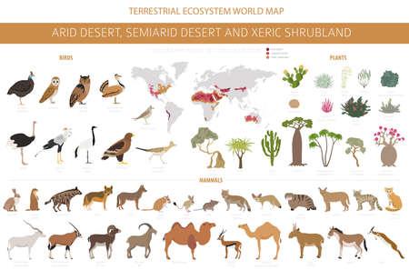 Desert biome, xeric shrubland natural region infographic. Terrestrial ecosystem world map. Animals, birds and vegetations design set. Vector illustration