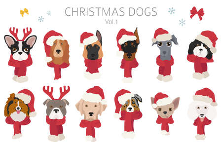 Dog portraits in Santa hats and scarves. Christmas holiday design. Vector illustration