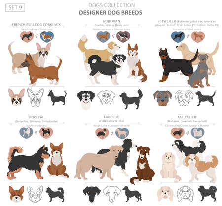 Designer dogs, crossbreed, hybrid mix pooches collection isolated on white. Flat style clipart dog set. Vector illustration Ilustração Vetorial