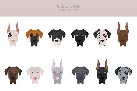 Great dane. Different varieties of coat color dog set. Vector illustration