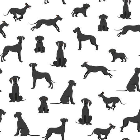 Great dane seamless pattern. Different variaties of coat color dog set. Vector illustration