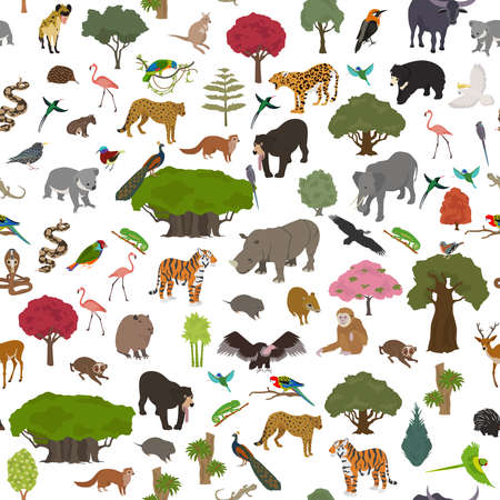 Tropical and subtropical dry broadleaf forest biome, natural region seamless pattern. Seasonal forests. Animals, birds and vegetations ecosystem design set. Vector illustration Illustration