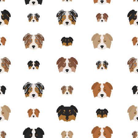 Australian shepherd dog seamless pattern. Different variations of coat color set. Vector illustration Vektorové ilustrace