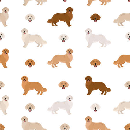 Golden retriever dogs in different poses and coat colors. Seamless pattern. Adult goldies and puppy set. Vector illustration