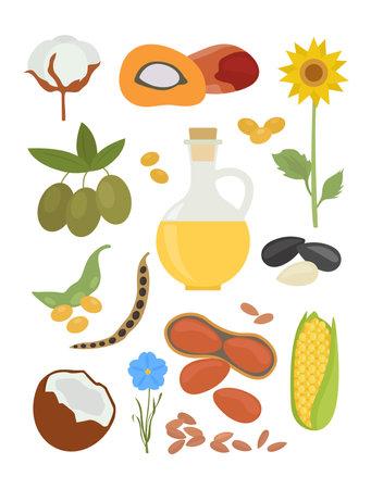 Top 10 plants for vegetable oil production infographic design. Vector illustration