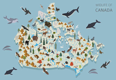 Isometric 3d design of Canada wildlife. Animals, birds and plants constructor elements isolated on white set. Build your own geography infographics collection. Vector illustration