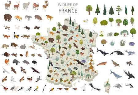 Isometric 3d design of France wildlife. Animals, birds and plants constructor elements isolated on white set. Build your own geography infographics collection. Vector illustration