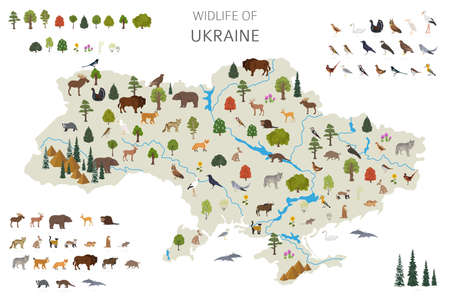 Flat design of Ukraina wildlife. Animals, birds and plants constructor elements isolated on white set. Build your own geography infographics collection. Vector illustration