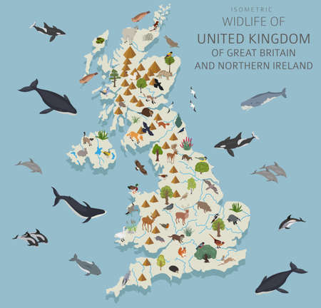 Isometric 3d design of United Kingdom wildlife. Animals, birds and plants constructor elements isolated on white set. Build your own geography infographics collection. Vector illustration