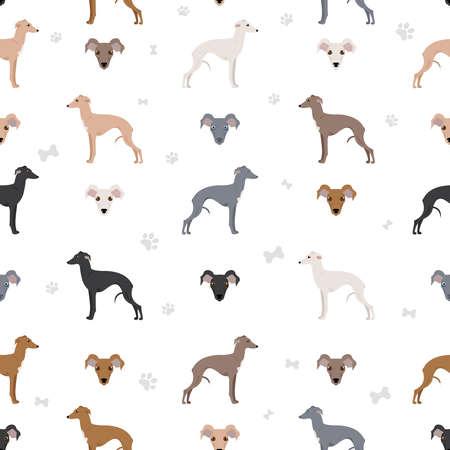 Italian greyhound seamless pattern. Different poses, coat colors set. Vector illustration Vector Illustratie