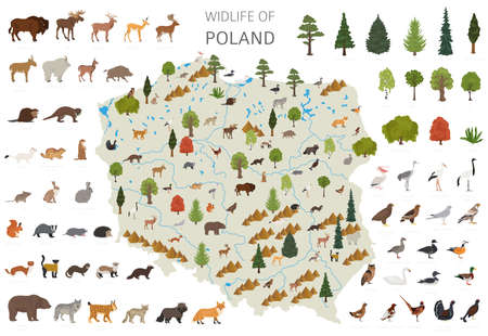 Flat design of Poland wildlife. Animals, birds and plants constructor elements isolated on white set. Build your own geography infographics collection. Vector illustration