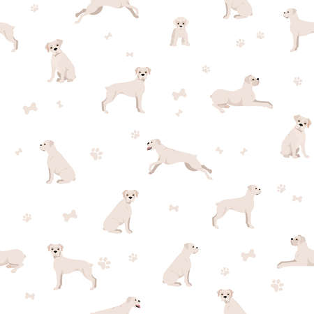 Boxer dog seamless pattern. Different poses, puppy. Vector illustration