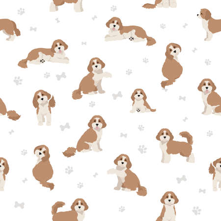 Cavapoo mix breed seamless pattern. Different poses, coat colors set. Vector illustration