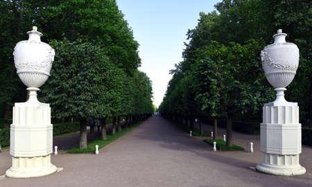 peterhof: Alley in the Park of Peterhof Stock Photo