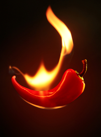 catchy: Red Hot Chilli sat on fire on a black background Stock Photo