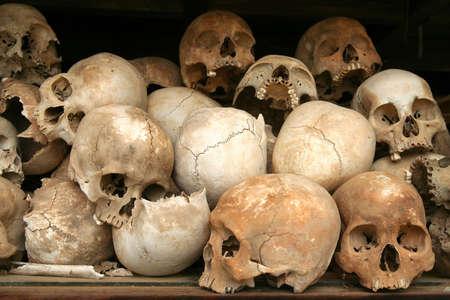 Crânes au Musée génocide dans les domaines de la mise à mort au Cambodge.  Banque d'images - 5079334