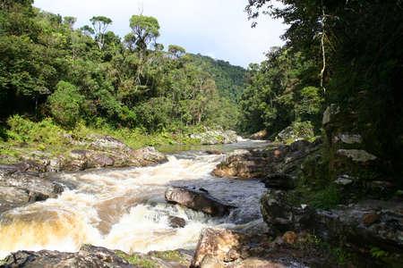River flowing through Ranomafana National Park in Madagascar photo