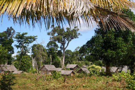 Small Malagasy village in tropics Stock Photo - 12337477