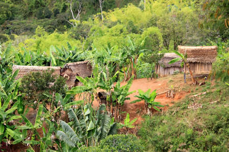 Small village in the middle of Madagascar rainforest Stock Photo - 12338448