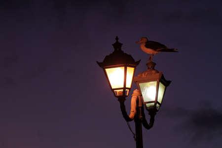 Streetlamp at nightfall near the Essaouira port, Morocco photo