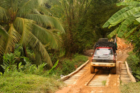 Road through tropical vegetation in eastern Madagascar