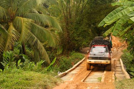 Weg door tropische vegetatie in het oosten van Madagaskar