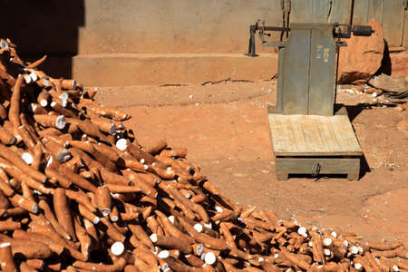 kilo: Pile of manioc for sale by kilo on the african market