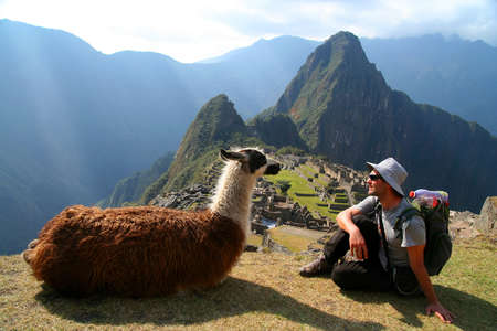 backpackers: Tourist and llama sitting in front of Machu Picchu, Peru