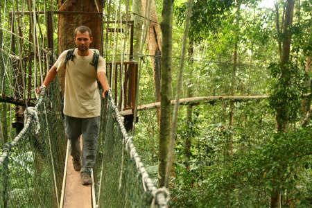 Tourist walking on the canopy bridge in Taman Negara, Malaysia