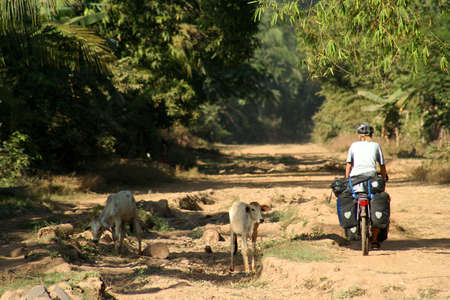 Woman on a cycle touring trip in rural part of Cambodia photo