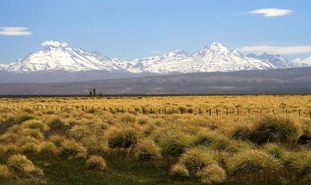 Brede grasland met de Andes op de achtergrond, Patagonië, Argentinië