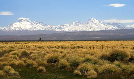 Wide grassland with the Andes in the background, Patagonia, Argentina photo