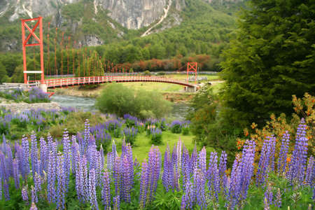Red bridge over small river in chilean Patagonia