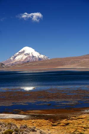 Snowcapped Nevado Sajama volcano in Park Lauca in Chile Stock Photo - 15662209