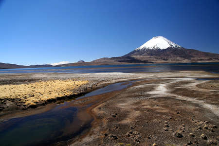 Snowcapped Parinacota volcano in Park Lauca in Chile Stock Photo - 15683763