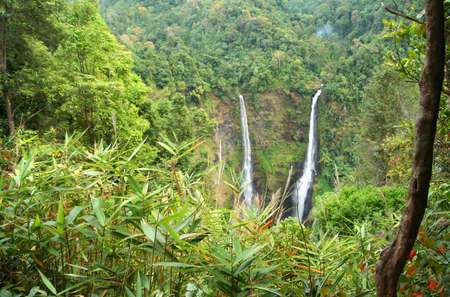 Beautiful Tad Fan waterfall in the dense jungle on the Bolaven Plateau in Laos photo