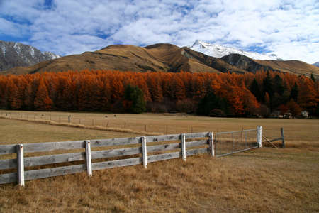 Beautiful mountain scenery on road to Mt Cook New Zealand Stock Photo - 16317020