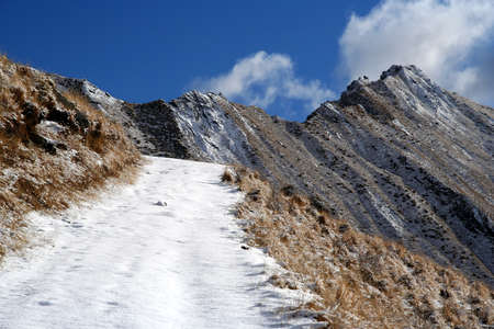 Snowy path leading to the summit of Mount Roy, South Island, New Zealand photo