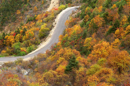 Mountain road during autumn in the mountains of Yunnan, China photo