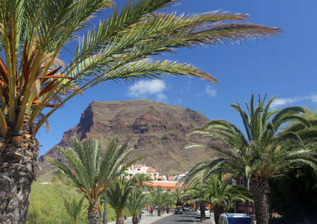 Beautiful town street with palmtrees on the sides in Valle Gran Rey on the island of La Gomera, one of the archipelago of Canary Islands, Spain Stock Photo - 19710927