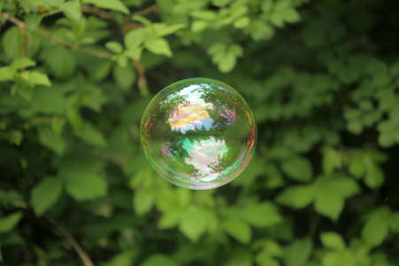 Single soap bubble floating in the air photo