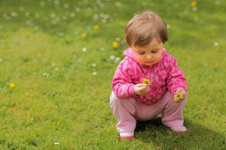 Baby girl picking flowers on the grass in the garden photo