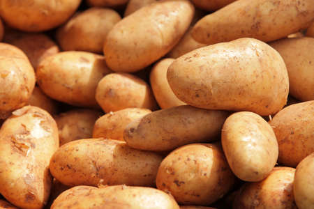 brixton: A pile of potatoes on sale on a Brixton farmers market Stock Photo