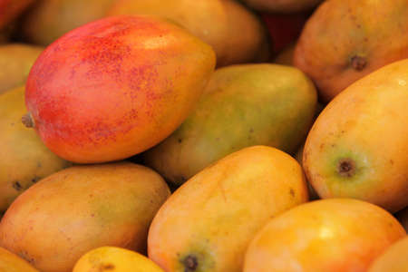 brixton: Mangoes on sale on a farmers market in Brixton Stock Photo