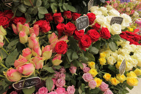 Roses for sale on the  flower stand at Victoria train station in London, UK photo