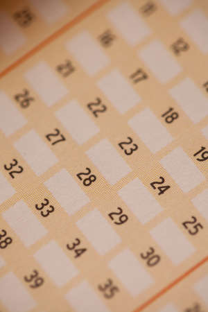 Empty slip with lottery numbers to be picked for a draw photo