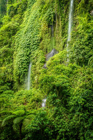 Small waterfall in the dense jungle of the tropical island of Lombok, Indonesia photo